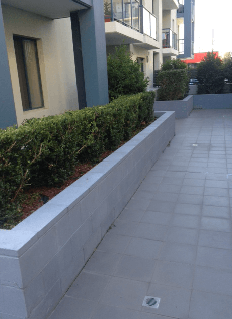 Garden Hedge 4 Mount Druitt
