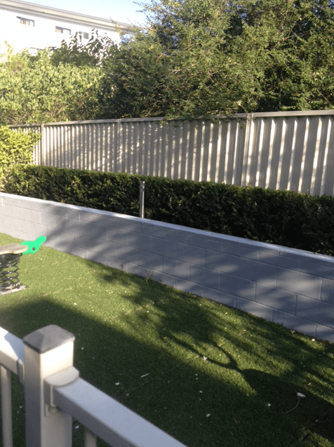 Garden hedge 1 Mount Druitt
