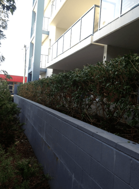 Garden hedge 5 Mount Druitt