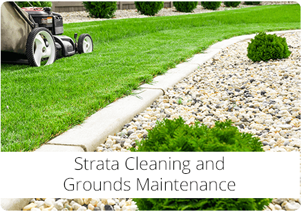 Strata Cleaning and Grounds Maintenance